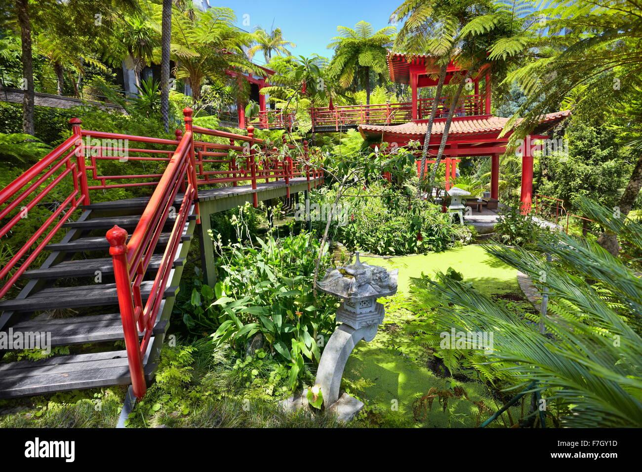 Landscape Pond Plants