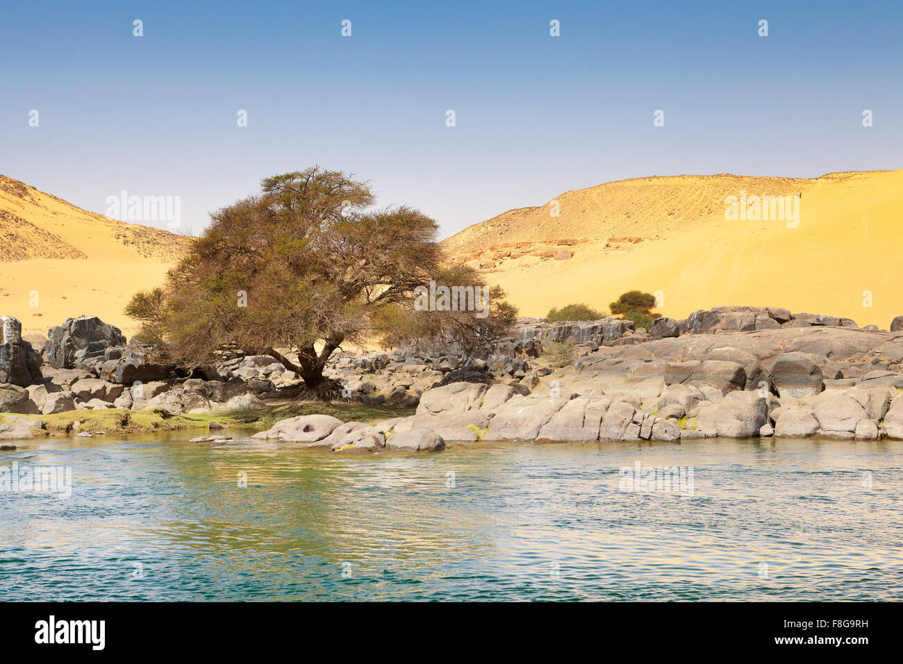 Vegetation Nile River Stock Photos Amp Vegetation Nile River Stock Images