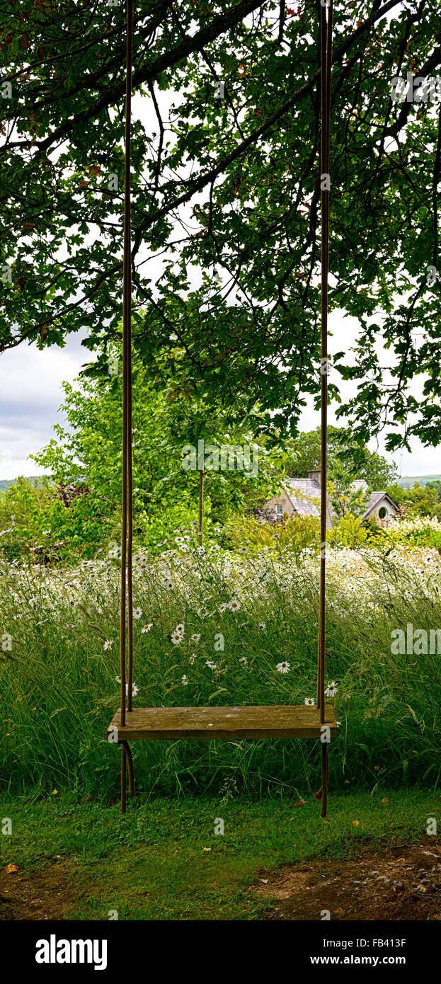 hanging tree swing chair moving baby empty seat hang garden park parkland flower stock flowers flowering summer