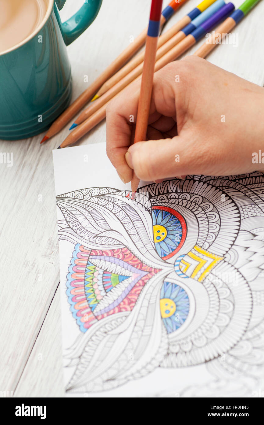 Coloring With Crayons For Adults : coloring, crayons, adults, Person, Coloring, Adult, Colorful, Pencil, Stock, Photo, Alamy