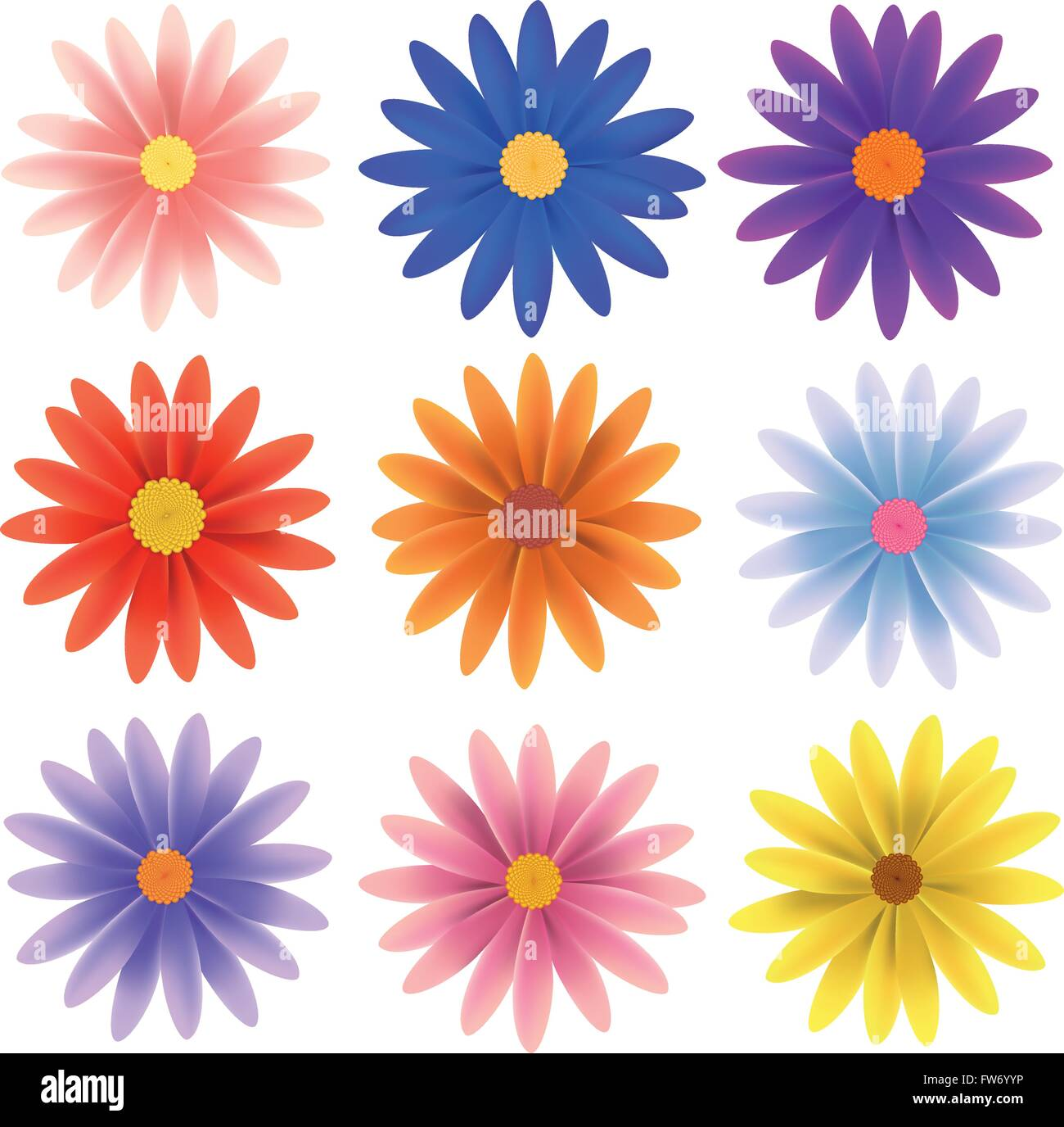 hight resolution of set of nine gerber daisy flowers in various colors isolated on white vector illustration stock