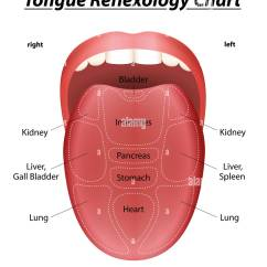 Health Tongue Diagram 2010 Ford F 150 Fuse Box Reflexology Chart With Description Of The