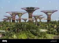 The Super Trees in Gardens by the Bay Nature Park ...