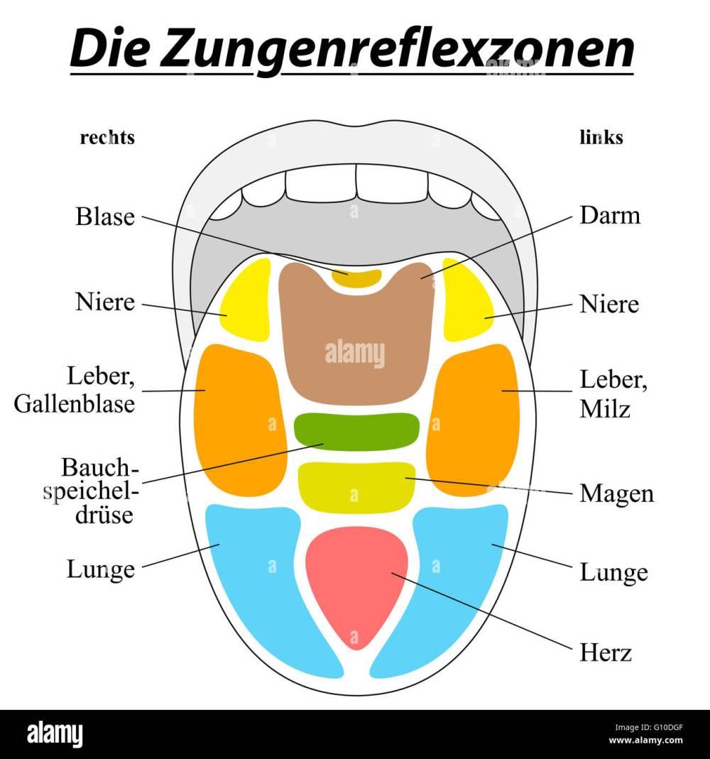 medium resolution of tongue reflexology chart german labeling with description of the corresponding internal organs