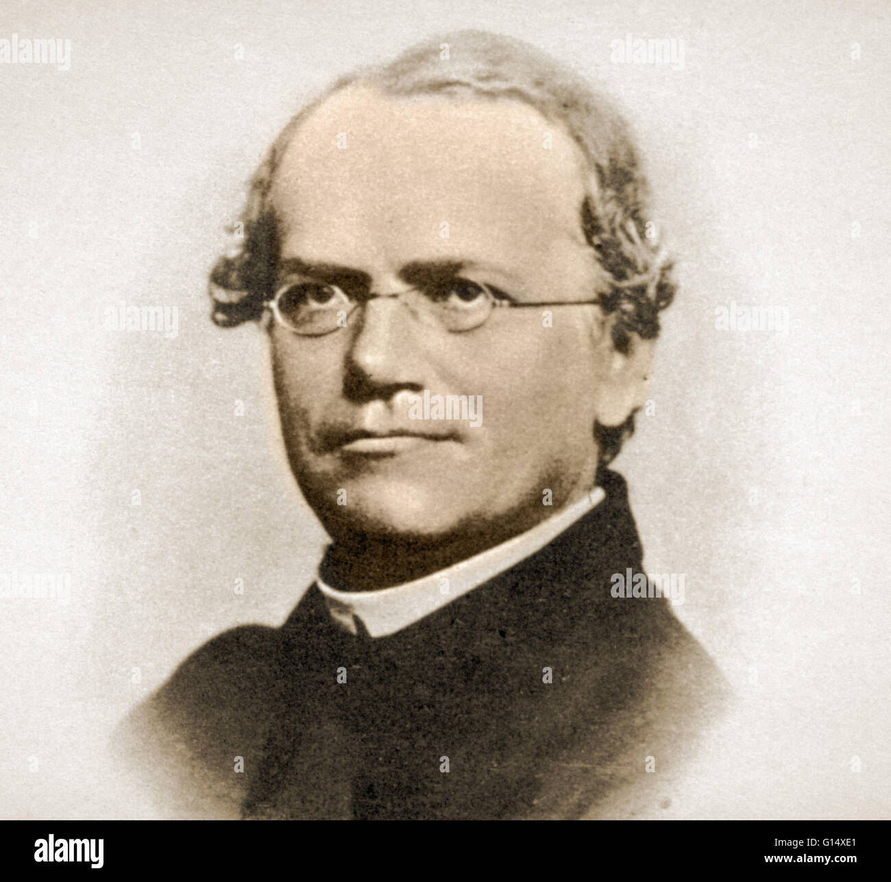 Gregor Mendel Worksheet 6 3