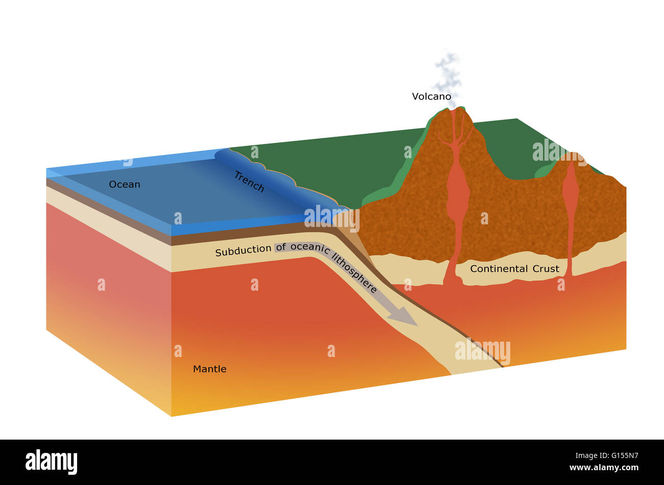 Cutaway Artwork Of A Subduction Zone The Tectonic Plates Of The Stock Photo