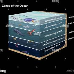 Ocean Floor Diagram Drawing Parts Of The Titanic Ship Cross-sectional Showing Zones Ocean. From Top To Stock Photo, Royalty Free Image ...