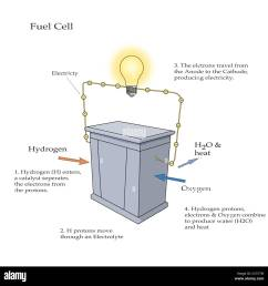 diagram illustrating how a fuel cell takes in hydrogen and oxygen and produces electricity with water and heat as byproducts hydrogen enters the cell  [ 1300 x 1320 Pixel ]