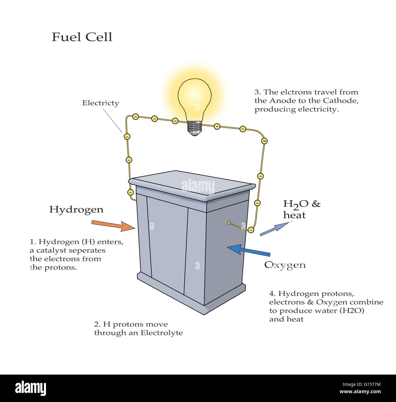 hight resolution of diagram illustrating how a fuel cell takes in hydrogen and oxygen and produces electricity with water and heat as byproducts hydrogen enters the cell