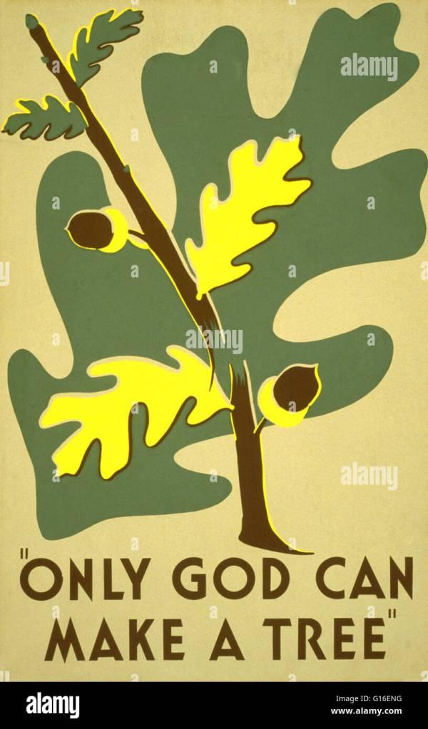 """Entitled """" God Make Tree"""". Poster Promoting"""