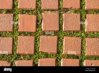 grass brick stone path texture green pavement sidewalk ...