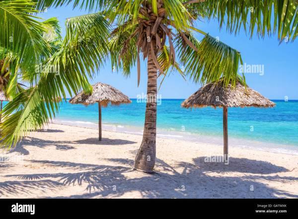 Caribbean Tropical Beach Straw Umbrella Stock