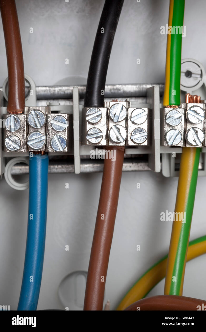 medium resolution of junction box power cables stock image
