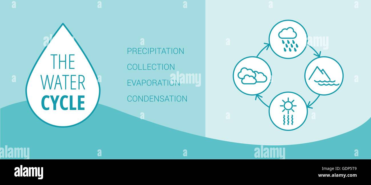 hight resolution of the water cycle vector diagram of precipitation collection evaporation and condensation icons set