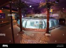 Sea Life Centre Aquarium In Stock &