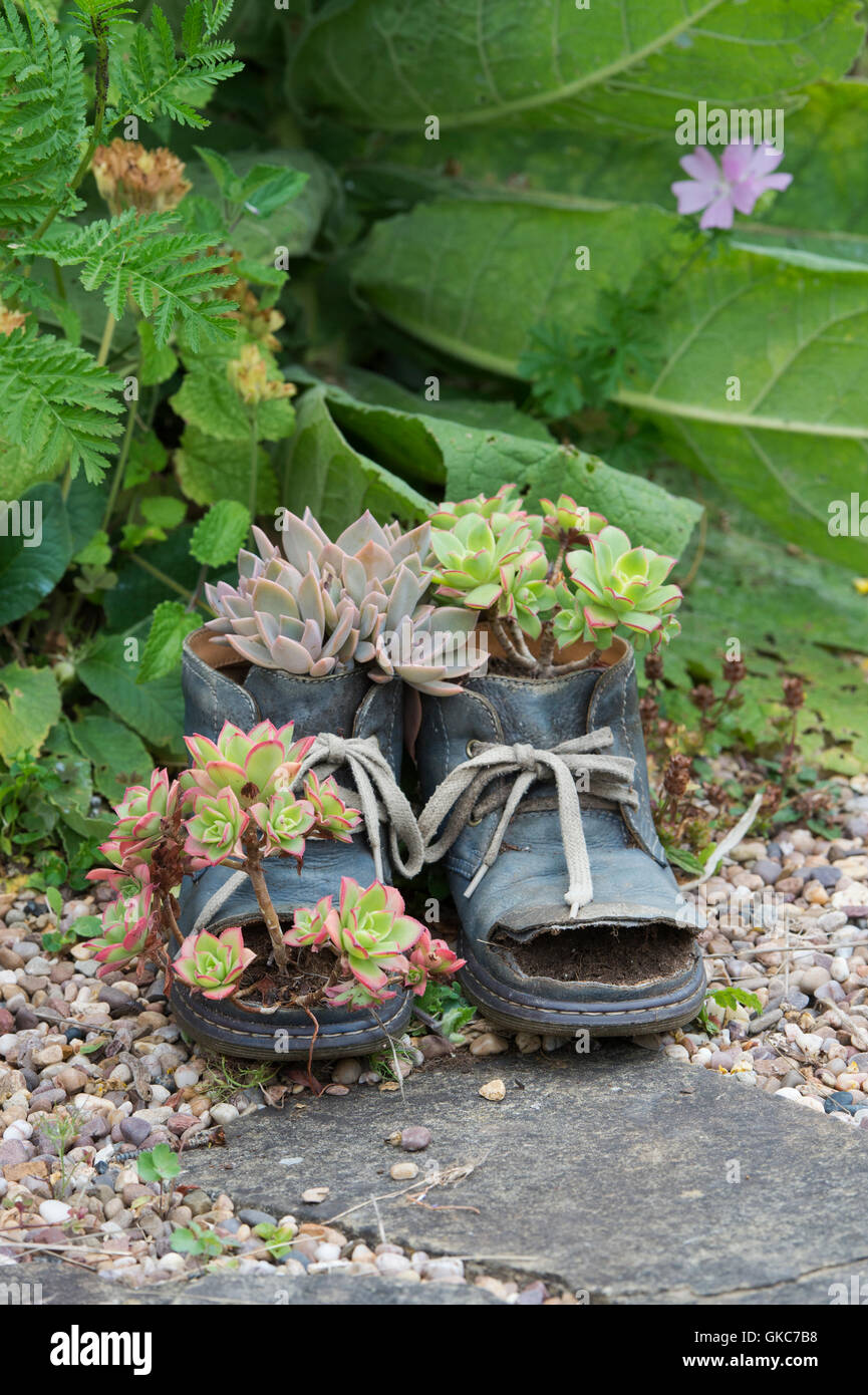 Unusual Plant Pots High Resolution Stock Photography And Images Alamy