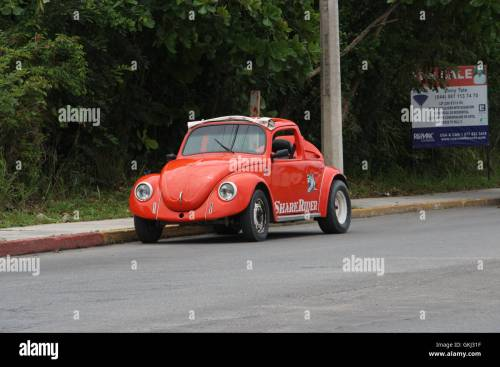 small resolution of red volkswagen mexico punch buggies punch buggy punch car punch dub piggy punch slug bug beetle bug vw