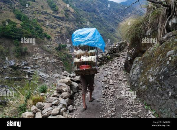 nepalese sherpa hiking mountain