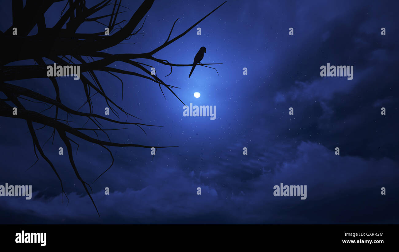 night sky on halloween