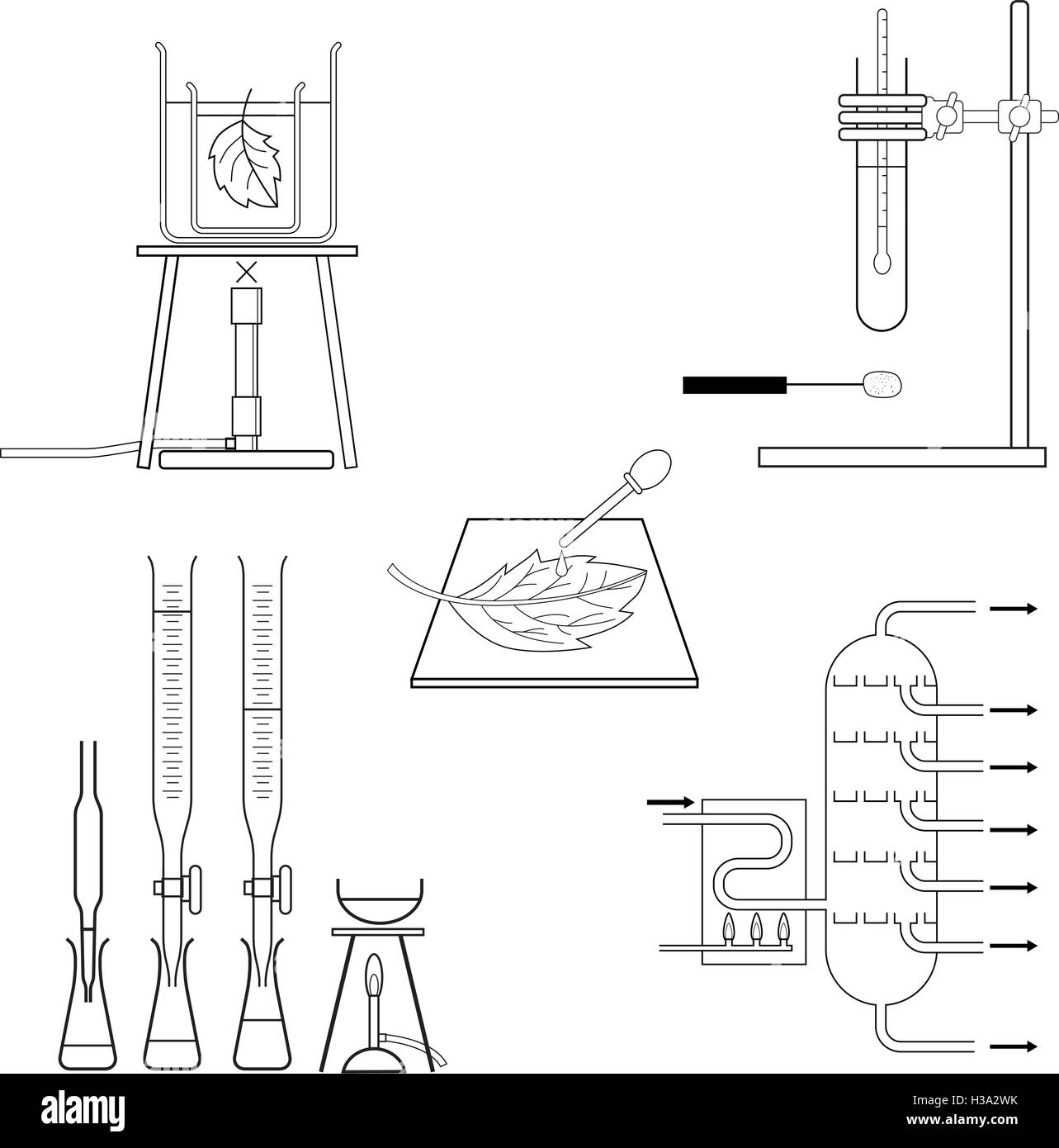Test Tube Bunsen Burner Stock Photos Amp Test Tube Bunsen Burner Stock Images