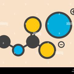 Sodium Atom Diagram Kenwood Kdc 138 Wiring Atomic Structure Stock Photos And