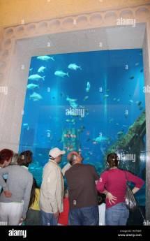 Atlantis Hotel Interior Stock &