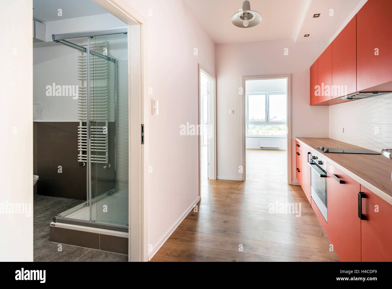 New apartment empty room with domestic kitchen and bathroom Stock Photo 123205245  Alamy