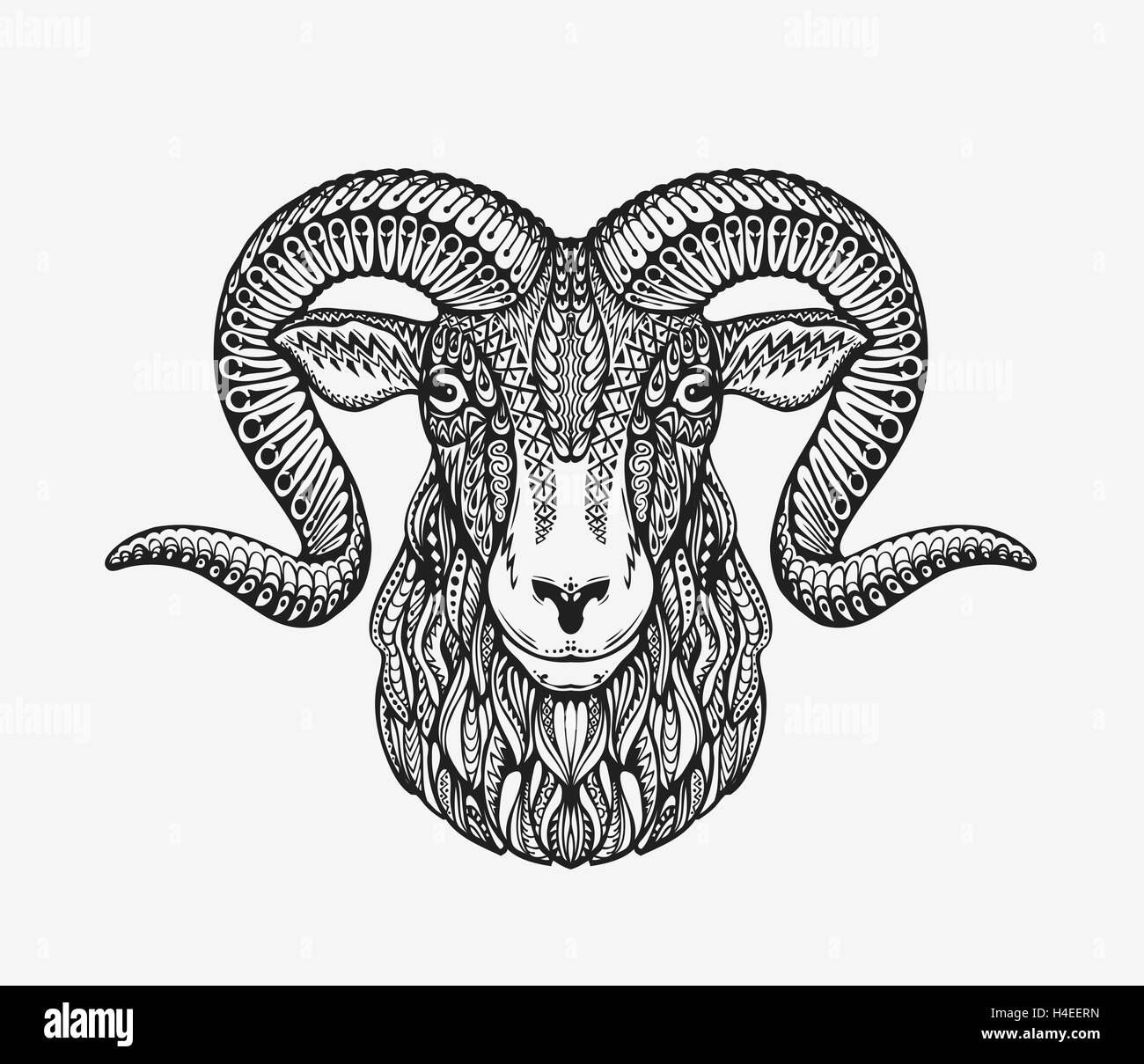 Line Drawing Sheep Stock Vector Images
