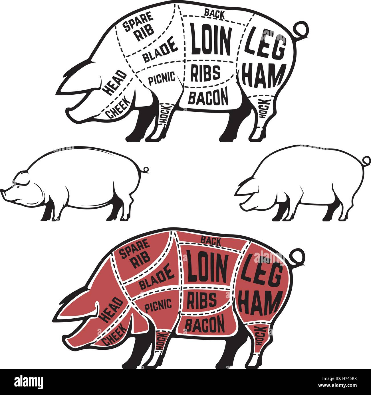 pig cuts diagram human muscle cell butcher scheme and guide pork set of stock silhouettes isolated on white background