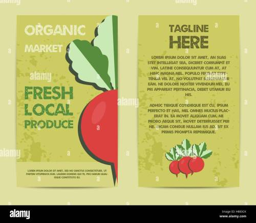 small resolution of stylish farm fresh flyer template or brochure design mock up design with shadow vintage colors best for natural shop organic fairs eco markets and