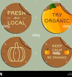 organic farm corporate identity design with pumpkin branding your eco shop company labels badges mock up design best for natural shop organic fairs  [ 1300 x 1130 Pixel ]