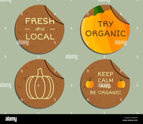 small resolution of organic farm corporate identity design with pumpkin branding your eco shop company labels badges mock up design best for natural shop organic fairs