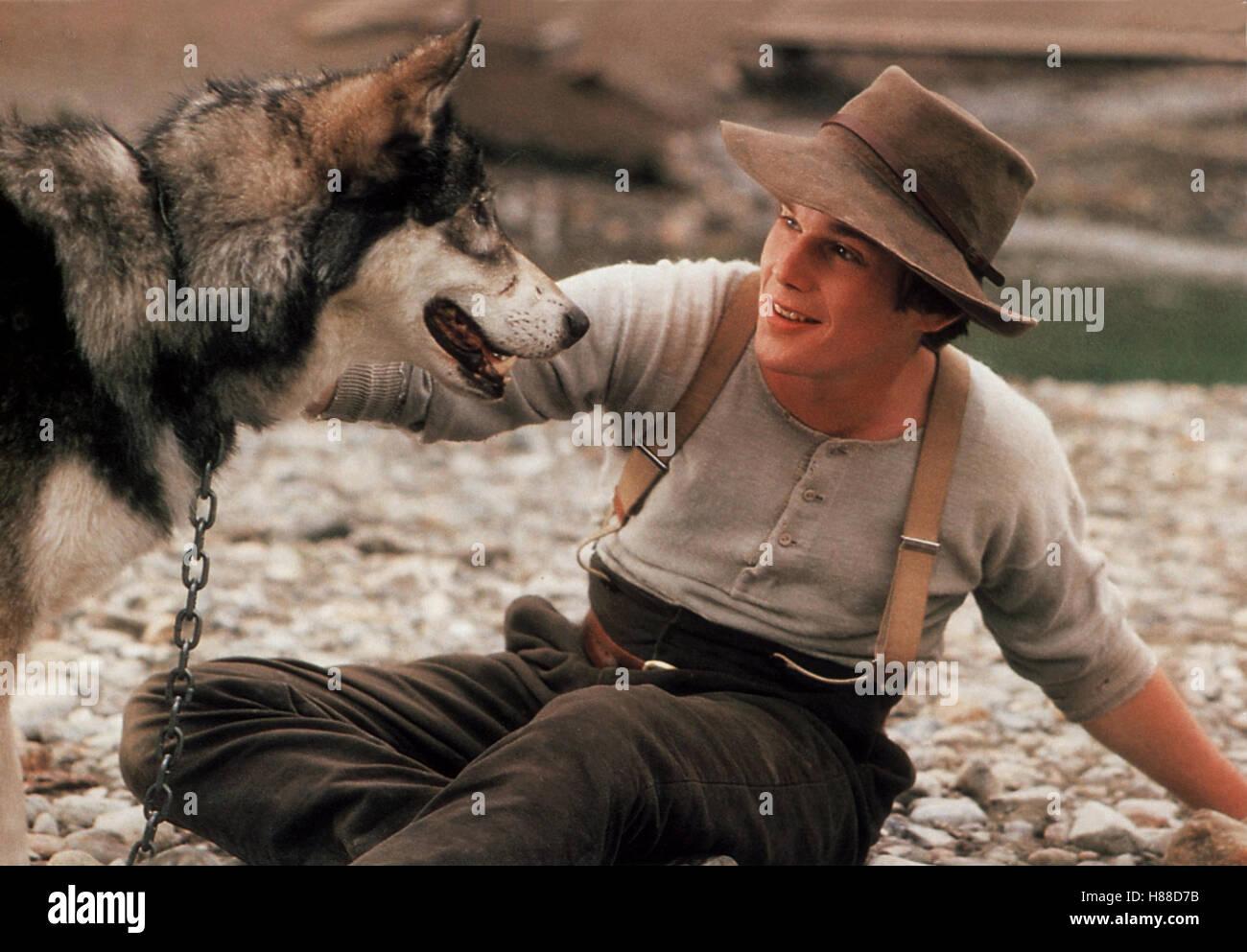 Wolfsblut White Fang Usa Regie Randal Kleiser