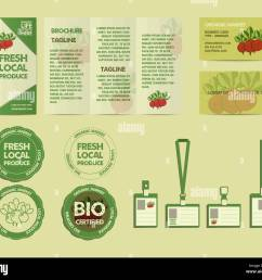 set of summer farm fresh branding identity elements organic design mock up flyer logo template business card best for natural shop organic fairs  [ 1300 x 1130 Pixel ]