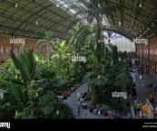 tropical indoor garden