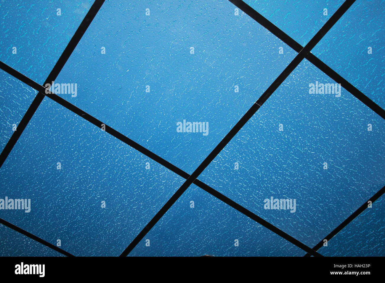 https www alamy com stock photo blue ceiling tiles separated by a grid of black dividers 126993994 html
