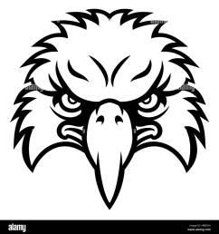 eagle bird character sports mascot head stock image [ 1290 x 1390 Pixel ]