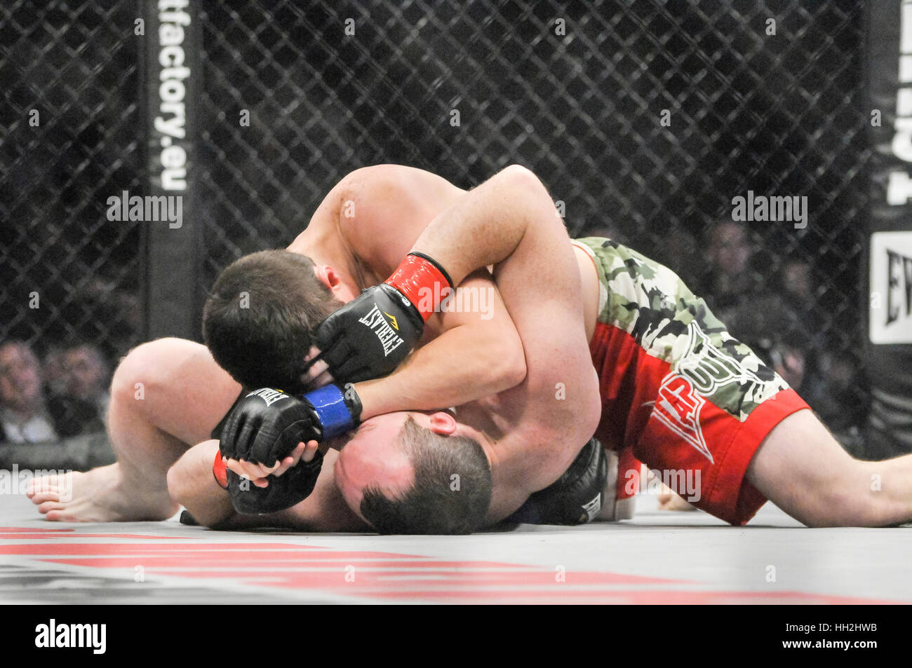 two mma cage fighers