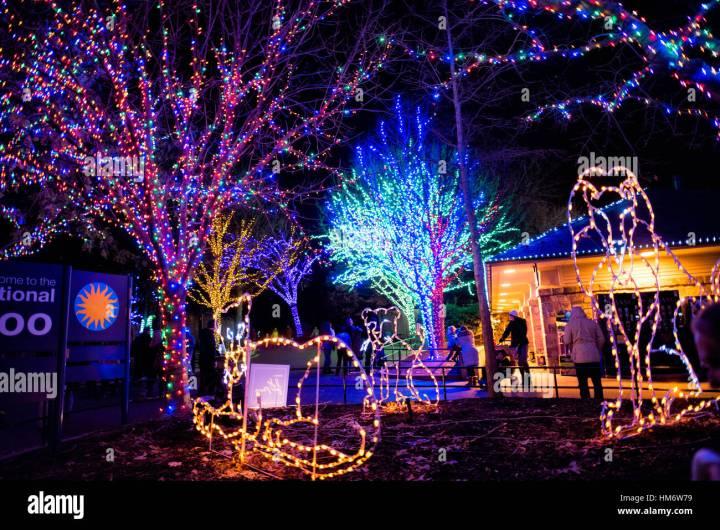 National Zoo Christmas Lights