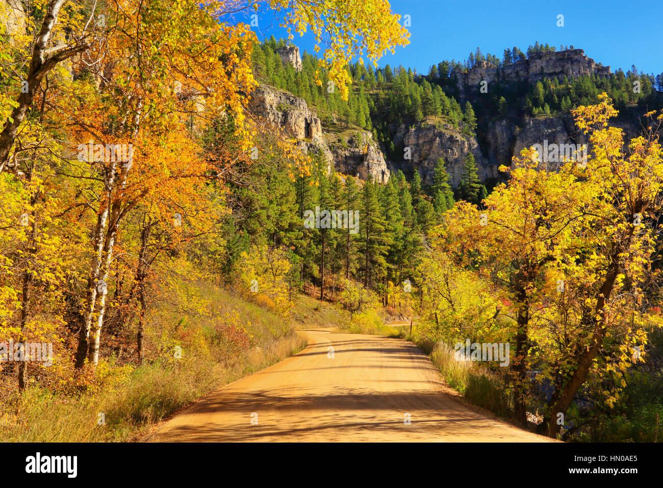 Roughlock Falls Road Spearfish Canyon Black Hills Savoy