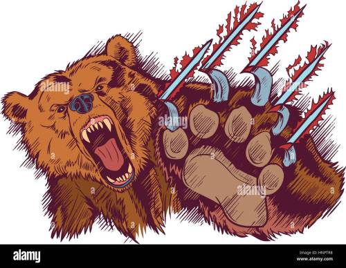 small resolution of vector cartoon clip art illustration of a brown bear mascot slashing or clawing at the foreground
