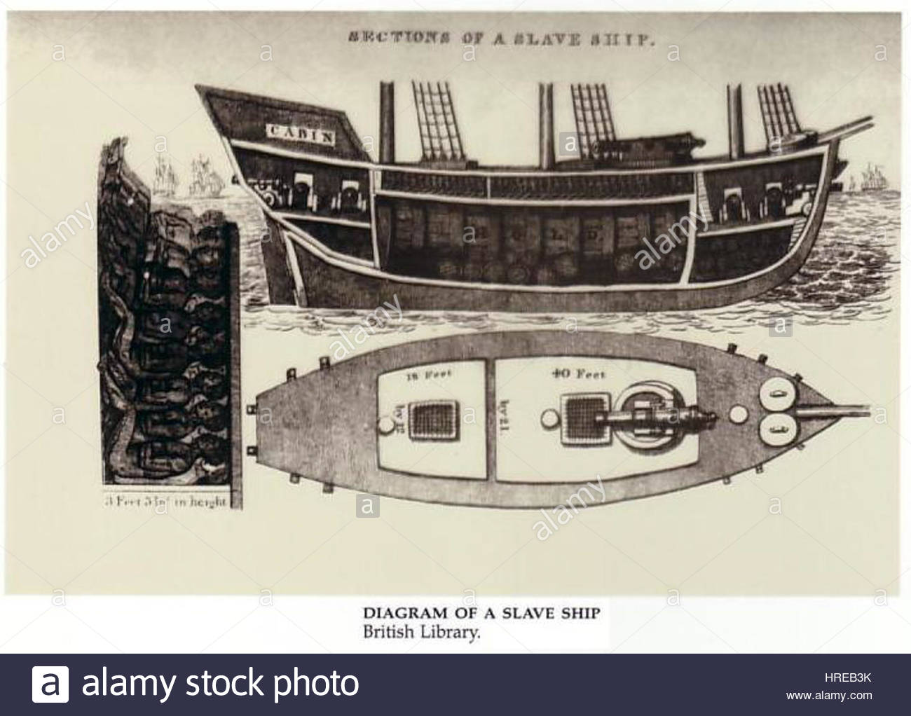 hight resolution of diagram of a slave ship