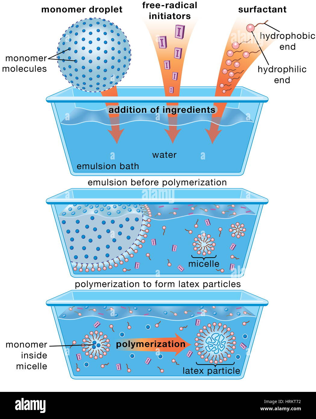 hight resolution of schematic diagram of the emulsion polymerization method monomer molecules and free radical initiators are added to a water based emulsion bath along