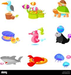adult animal animal themes animal beach ball bead bird avian clipart close up color colour color image computer graphics computer icon coral digitally  [ 1300 x 1323 Pixel ]
