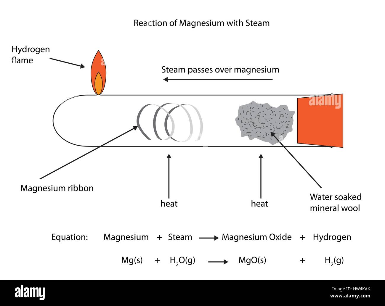 hight resolution of labelled diagram of magnesium reacting with steam vector diagram for educational use stock