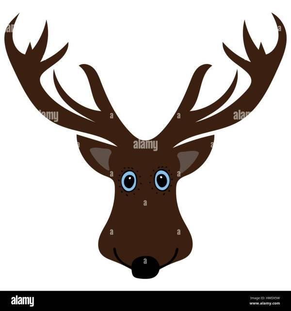 Funny Cartoon Deer Head