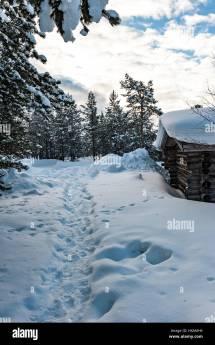 Kakslauttanen Finland Stock &