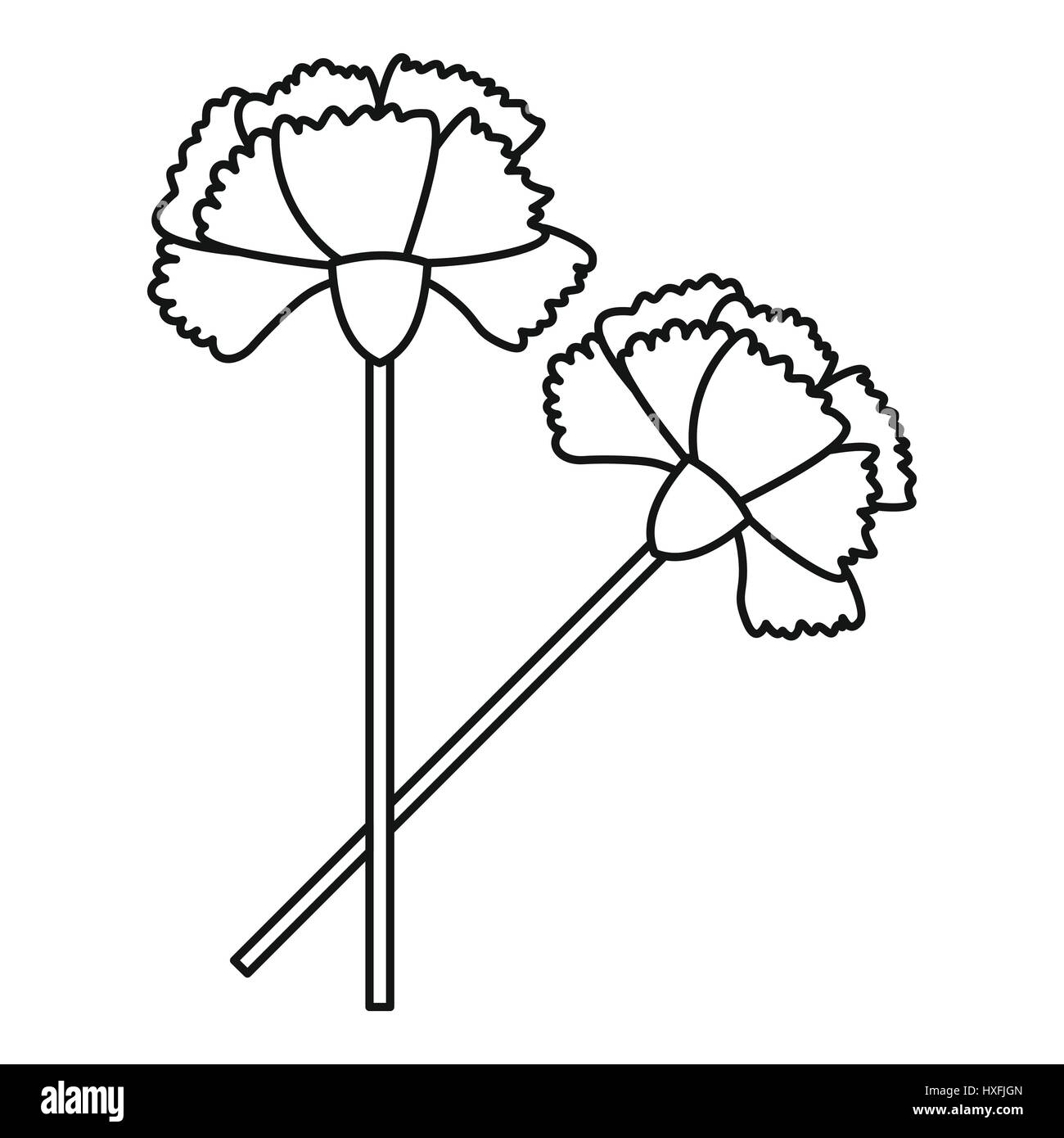 hight resolution of carnation icon outline style