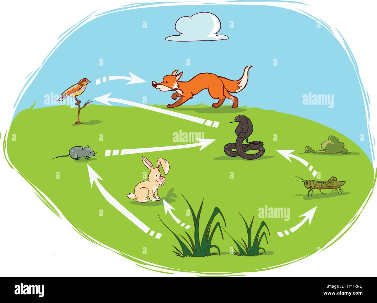 Vector Illustration Of A Ecosystem Diagram Stock Vector