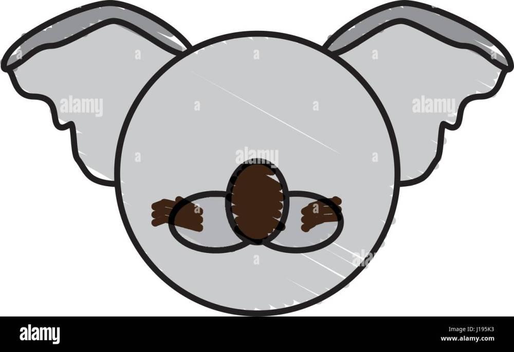 medium resolution of drawing koala face animal stock image